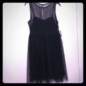 Lauren Conrad midnight garden dress